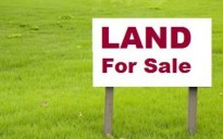 1 Acre 83 Cent Land for sale in  Panayikulam Just 8km  from Edappally