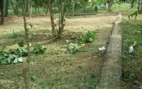 8.5 cents of residential plot for sale at Mundur, Thrissur
