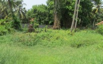56 Cents of Land for sale at Mulavukad,Ernakulam
