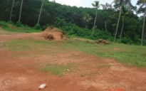 Residential Land for Sale in Kollad, Kottayam