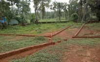 52 cent plot for sale in Pilathara, Kadannapplli – Kannur