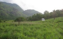 15 acre land for sale near Pulinjal, Mananthavady, Wayanad