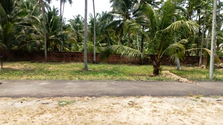 6 Cent plot for sale in Kottapady, Guruvayoor
