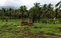 6 acres of land in Payyanadam, Mannarkkad, Palakkad
