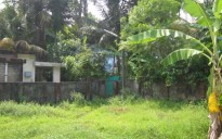 Land for Sale Kollam-Sakthikungara
