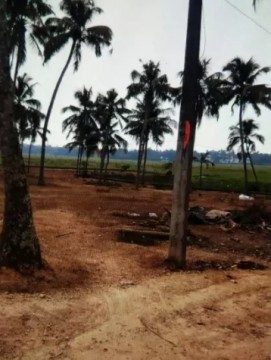 House plot for sale Aluva – Muppathadam