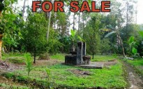 20 cent land for sale in Velloor Mevalloor, Kottayam
