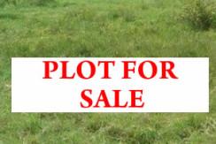5 cents land for sale Thrippunithura, Nadakkavu